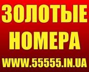 Красивые номера МТС,  Киевстар,  Лайф,  Билайн,  Укртелеком