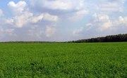 приватизированный участок земли 6 Га с/х назнач.  70 км от Харькова