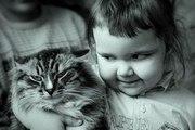 Детский психолог «Агрессивный ребенок: особенности воспитания»