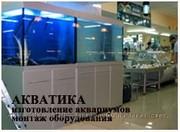 Изготовим торговые аквариумы для продажи живой рыбы