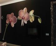 Художественная роспись стен в интерьере. Дизайн интерьеров.