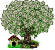 Беззалоговый кредит без справки о доходах