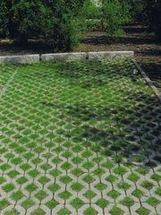 Тротуарная плитка «Экология»