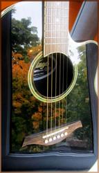 Электроакустическая гитара Vintage