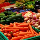 Разнорабочие на сортировку овощей