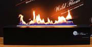 Автоматический биокамин Wild Flame