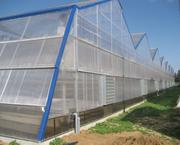 Семена,  удобрения,  теплицы,  системы полива,  агротехника,  системы защит