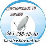 Спутниковое ТВ Безлюдовка Васищево Гусиная Поляна Темновка Водяное