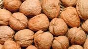 Закупаем грецкий орех в скорлупе по Изюму и региону