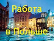 Официальная Работа в Польше