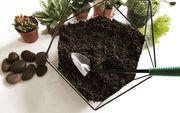 Курсы флорариума