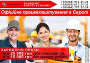Официальная работа в Польше более 100 вакансий