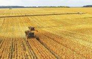 Сельхозпредприятия в Украине. Куплю.