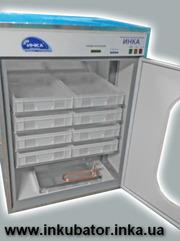 Продажа инкубаторов автоматических ИНКА под заказ