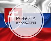 Работа в Словакии на автозаводе, складах.ВНЖ
