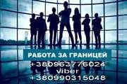Легальная работа и помощь в оформлении документов