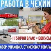 Работа в Чехии на склады LOXXESS