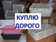 Покупаем отходы пластмасс,  лом пластика,  ящики