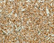 Куплю зерноотходы зерновые,  масличные,  бобовые